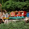 Weekend Fun for Philly Kids: Trains, Festivals, Nature August 27-28