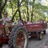 13 Hay Rides Near Boston for Fall and Halloween Family Fun