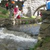 Spring Fun at the 2016 Tarrytown Duck Derby and Y Healthy Kids Day