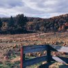 Where to Go Pumpkin Picking in Westchester and the Hudson Valley
