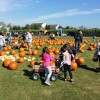 Top Fall Destinations for Long Island Families