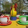 Twirling Teacups Ride Debuts at Fantasy Forest in Queens