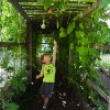 5 Kid-Friendly Urban Farms Right Here in New York City