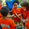 Free and Cheap Summer Camps for NYC Kids