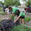 3 Funky Grassroots Organizations for Somerville Kids