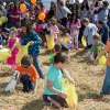 Best Easter Egg Hunts for NJ Kids