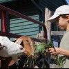 Stay on a Farm: Farm Stay Vacations Near NYC