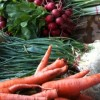Buying Local Food: CSAs in NYC with Delivery