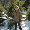Cut Your Own Christmas Tree Farms in Connecticut (Litchfield County)