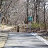 Best Bike Paths for Family Cycling in Westchester