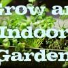 My Apartment Garden: How to Grow an Indoor Herb or Vegetable Garden