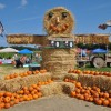 New England Pumpkin Patches with Bonus Fun for Families