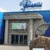 The Long Island Aquarium