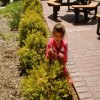 Gardening Classes and Clubs for NJ Kids