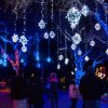 10 Fun Things to Do on Christmas Eve in Houston