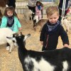 5 Animal Party Entertainers Houston Kids Will Go Wild For