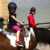 Kensington Stables: NYC Kids Can Go Horseback Riding in Brooklyn's Prospect Park