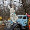 Baby Animals and Easter Farm Fun for Philly Kids