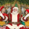 Macy's Santaland NYC: Best Times to Go and More Tips