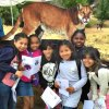 This Weekend's Fun for LA Kids: Mountain Lion, Enchanted Crawly, and Getty Fest