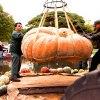 Weekend Fun: Giant Pumpkins, Fairies, Park Art, Icky Fest