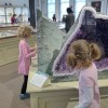 Visiting the Harvard Museums with Kids: Mummies, Glass Flowers & Totem Poles
