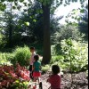 New York Botanical Garden for NYC Kids: Planting, Harvesting and Other Hands-on Nature Fun