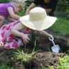 Gardening Clubs and Classes for Long Island Kids