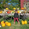 Pick Your Own Pumpkin Patches in Fairfield County