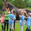 Pony Rides and Horseback Riding Lessons in the Hamptons
