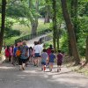 9 Family-Friendly Hiking Trails on Long Island