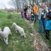 25 Spring Day Trip Ideas for NYC Families