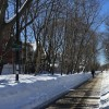 Where to Take Wonderful Wintertime Walks with Boston Kids