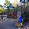 30 Fun Things to Do with Kids in Jackson Heights, Queens
