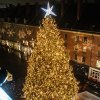 Christmas Tree Lightings in New York City This Holiday Season