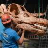Weekend Fun: Hello Titanosaur, Thunderbird Dance Fest, MLK Day Celebrations