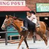 Wild West City: A Cowboy Theme Park in New Jersey