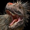 Feathered 'Dinosaurs Among Us' Opens at Natural History Museum