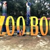 Halloween Fun at the Houston Zoo Boo