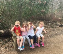 Guided Hikes For Houston Toddlers And Preschoolers