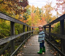 great swamp year round nature trails for new jersey kids