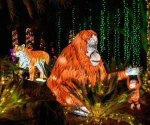 Zoo Lights continue this week. Photo by Jamie Pham