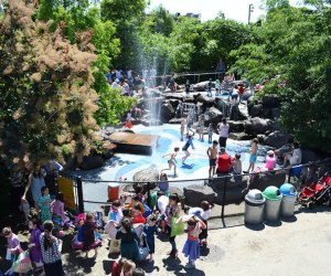 Brooklyn Bridge Park's Water Lab doesn't require admission