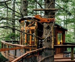 A zip line and more await at Portland's Eagle's Nest Treehouse. Photo courtesy of julian@hipcamp