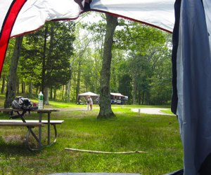 Wildwood State Park is home to a beautiful, sandy campground