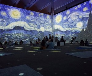 Every Immersive Art Experiences for Kids in LA: Beyond Van Gogh