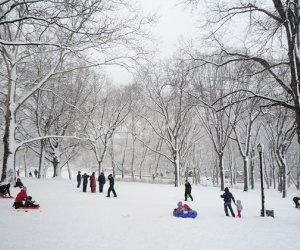 Astoria Park's sledding hill is in the middle of a winter wonderland