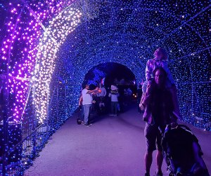 Nights of the Jack Is Now Open: Tunnel of lights