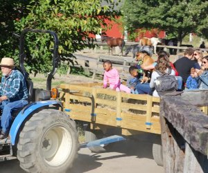 Best Farms for Family Fun and Entertainment in Chicago: kids on a tractor ride