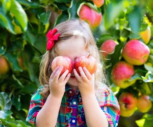 Best Farms for Family Fun and Entertainment in Chicago: girl holding apples over her eyes